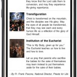 ProLife Rosary iPhone App-Luminous2