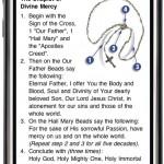 ProLife Rosary iPhone App-MercyChaplet