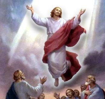 The New Christs Like A Curse